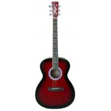 Гитара акустическая Emio SW-100 RDS, Emio, SW-100 RDS