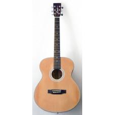 Гитара акустическая Emio SW-100 NT, Emio, SW-100 NT