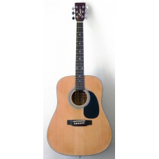 Гитара акустическая Emio SW-200 NL